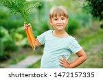 little girl picking carrots in... | Shutterstock . vector #1472157335