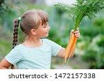 little girl picking carrots in... | Shutterstock . vector #1472157338