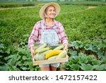 cute girl in wearing hat... | Shutterstock . vector #1472157422