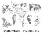 Vector vintage set illustrations of symbols tropical summer vacation. Hand drawn sketch of beach, surfer, toucan, parrot, sign shaka and exotic flowers. Brazil doodle map.