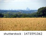 London From The North Downs At...