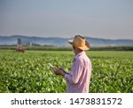 Senior Farmer With Hat Standing ...