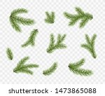 fir branches isolated on... | Shutterstock .eps vector #1473865088