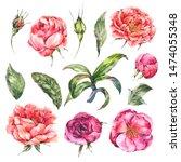 vintage watercolor set of pink...   Shutterstock . vector #1474055348