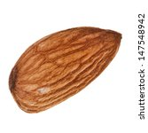 Single Almond Seed Close Up...