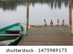 Four Ducks Standing On A Woode...
