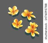 set of vector yellow flowers....   Shutterstock .eps vector #1476093788