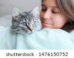 Stock photo beautiful woman at home holding and hug her lovely fluffy cat gray tabby cute kitten with blue 1476150752