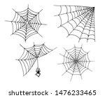 Sketch Of Spider Web. Hand...