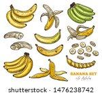 vector sketch bananas various... | Shutterstock .eps vector #1476238742