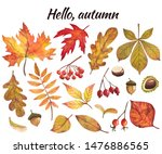 Watercolor Set With Autumn...