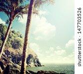 nature background in vintage... | Shutterstock . vector #147703526