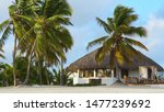house with thatched roof on the ... | Shutterstock . vector #1477239692