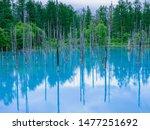Aoi-ike / Blue Pond. Hokkaido.