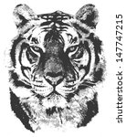 grunge tiger | Shutterstock . vector #147747215