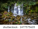 Scale Haw Forcewaterfall In The ...