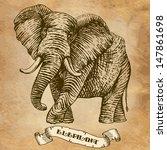 Elephant. Illustration ...