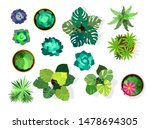 home plant set. cactus  green... | Shutterstock .eps vector #1478694305