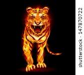 Fire Tiger. Illustration On...