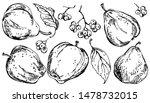 apple  pear  rowan vector... | Shutterstock .eps vector #1478732015