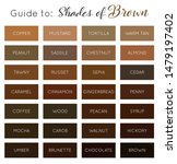 shades of brown   vector brown... | Shutterstock .eps vector #1479197402
