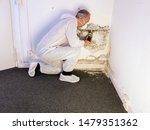 A Professional Pest Control...