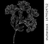 isolated vector illustration....   Shutterstock .eps vector #1479529712