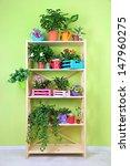 beautiful flowers in pots on... | Shutterstock . vector #147960275