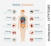 Medical Infographic   Eps10...