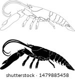 lobster silhouette icon on...   Shutterstock .eps vector #1479885458