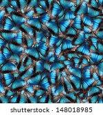 Blue butterflies in the...