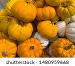 Small Orange And White Pumpkin...