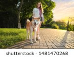 Stock photo young beautiful woman walking her adorable dog in park on sunny day 1481470268