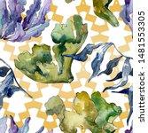 green and violet aquatic...   Shutterstock . vector #1481553305
