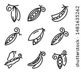 peas icons set. outline set of... | Shutterstock .eps vector #1481635262