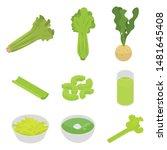 celery icons set. isometric set ... | Shutterstock .eps vector #1481645408