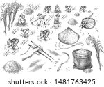 vector illustration of japanese ... | Shutterstock .eps vector #1481763425