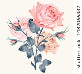 beautiful vector realistic rose ... | Shutterstock .eps vector #1482066332