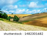 Sussex  English Landscape ...