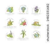 vector set design colorful... | Shutterstock .eps vector #1482331682