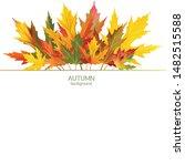maple leaves. autumn background....   Shutterstock .eps vector #1482515588