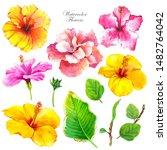 hibiscus watercolor... | Shutterstock . vector #1482764042
