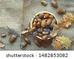 Acorns and oak leaves on burlap ...