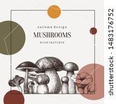 Forest Mushrooms Trendy Design. ...