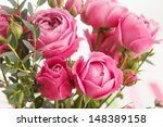 pink roses | Shutterstock . vector #148389158