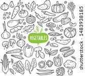 vegetables doodle drawing... | Shutterstock .eps vector #1483938185