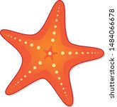 starfish. the silhouette of a... | Shutterstock .eps vector #1484066678