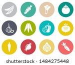 vegetables icons in set...   Shutterstock .eps vector #1484275448
