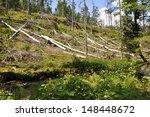 damaged environment   forest...   Shutterstock . vector #148448672