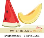 juicy melon and watermelon.... | Shutterstock .eps vector #148462658